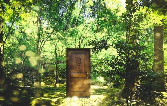 新しい道への扉を開く